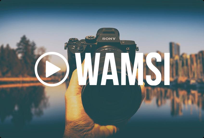 WAMSI